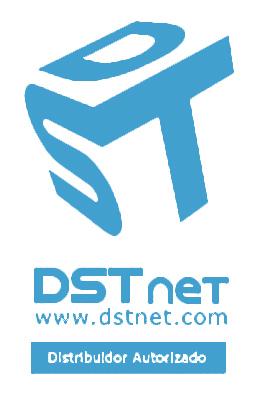DSTNETvert